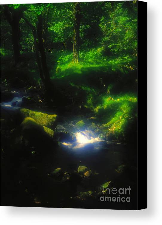 Landscape Canvas Print featuring the photograph Dartmoor Stream by Alex Cassels