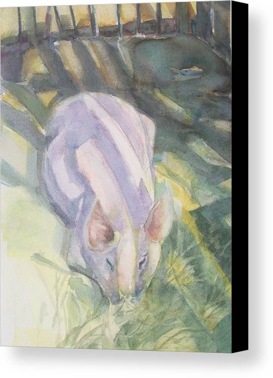 Farm Animals Canvas Print featuring the painting Ode To A Pig by Grace Keown
