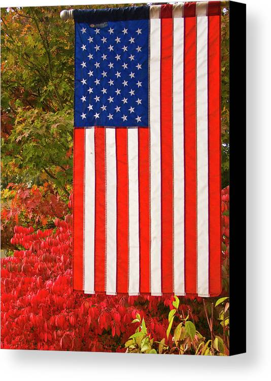 Ron Roberts Canvas Print featuring the photograph Old Glory by Ron Roberts