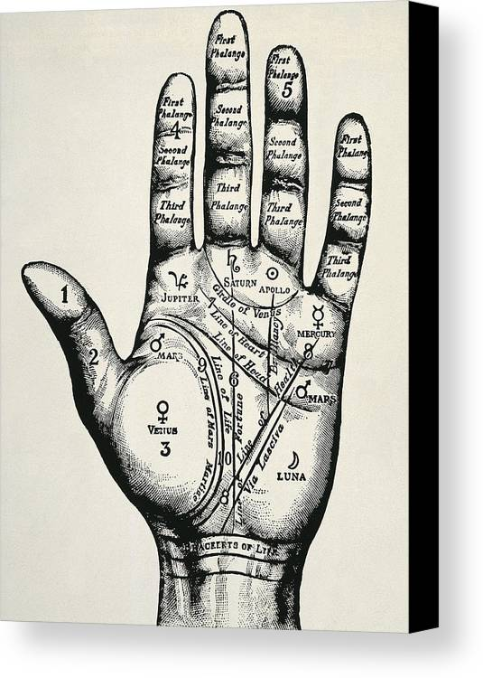 Vertical Canvas Print featuring the photograph Palmistry. Planetary And Zodiacal by Everett