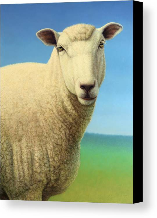 Sheep Canvas Print featuring the painting Portrait Of A Sheep by James W Johnson