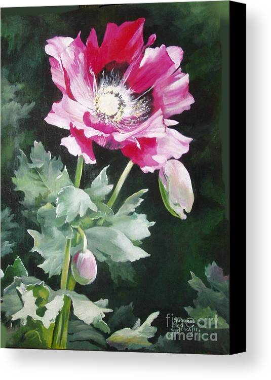Poppy Canvas Print featuring the painting Shining Star Poppy by Suzanne Schaefer