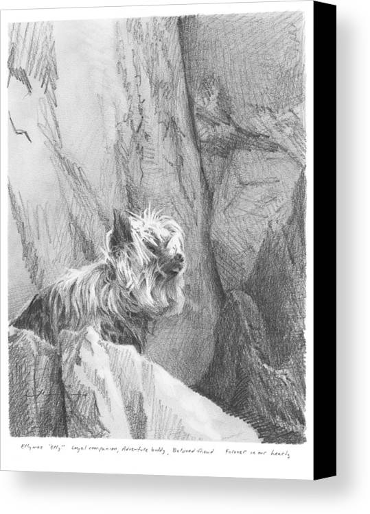 <a Href=http://miketheuer.com Target =_blank>www.miketheuer.com</a> Yorkie Dog On A Cliff Pencil Portrait Canvas Print featuring the drawing Yorkie Dog On A Cliff Pencil Portrait by Mike Theuer