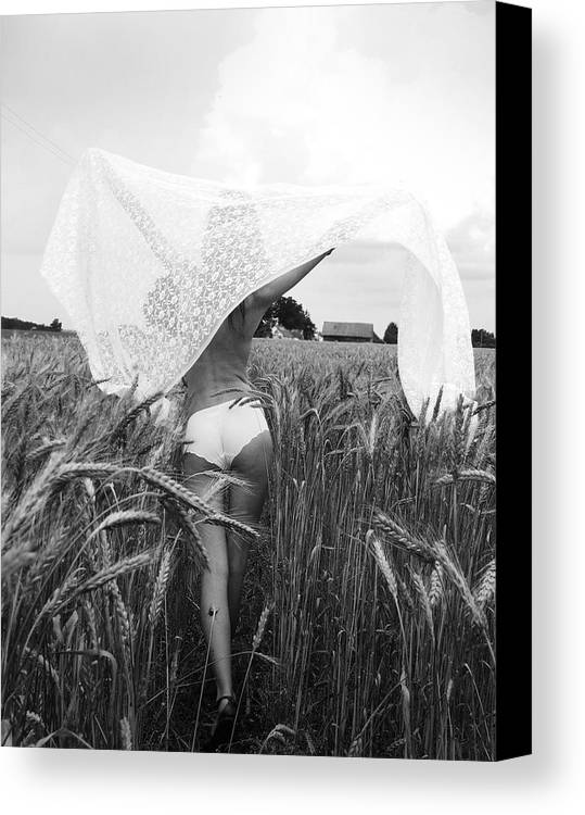 Room Canvas Print featuring the photograph Nude by Evelina Sumilovaite