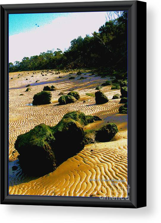 Beach Canvas Print featuring the photograph Waste Land by James Dierker