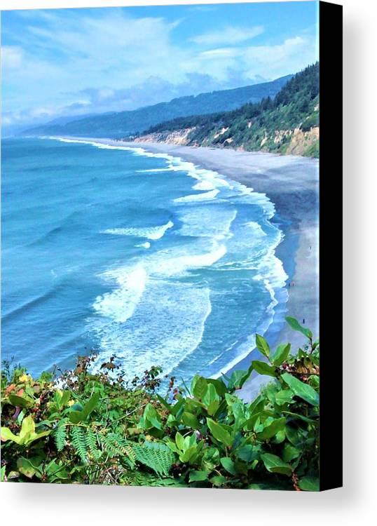 Agate Beach Canvas Print featuring the photograph Agate Beach by Lisa Dunn