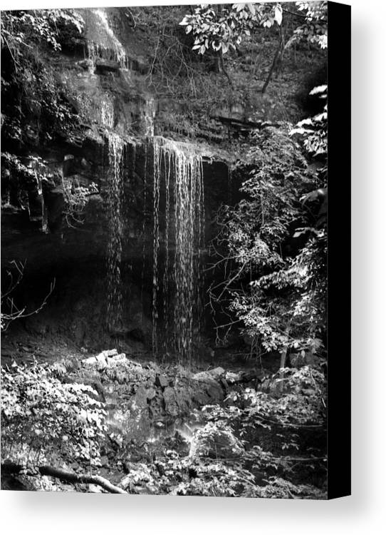 Ansel Adams Canvas Print featuring the photograph Crikfall by Curtis J Neeley Jr