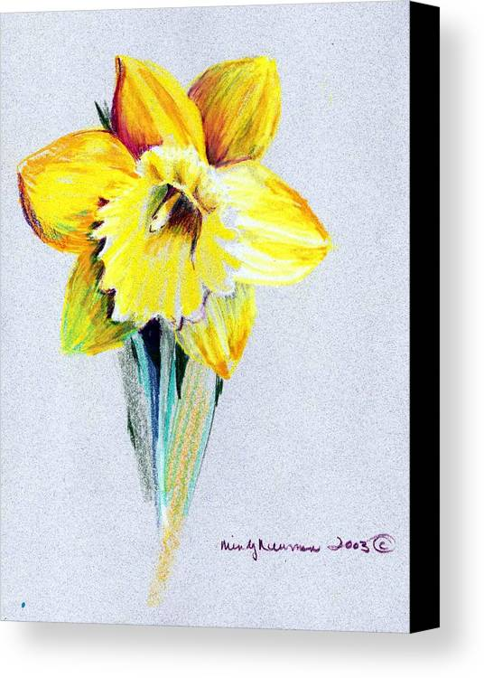 Daffodil Canvas Print featuring the drawing Daffodil by Mindy Newman