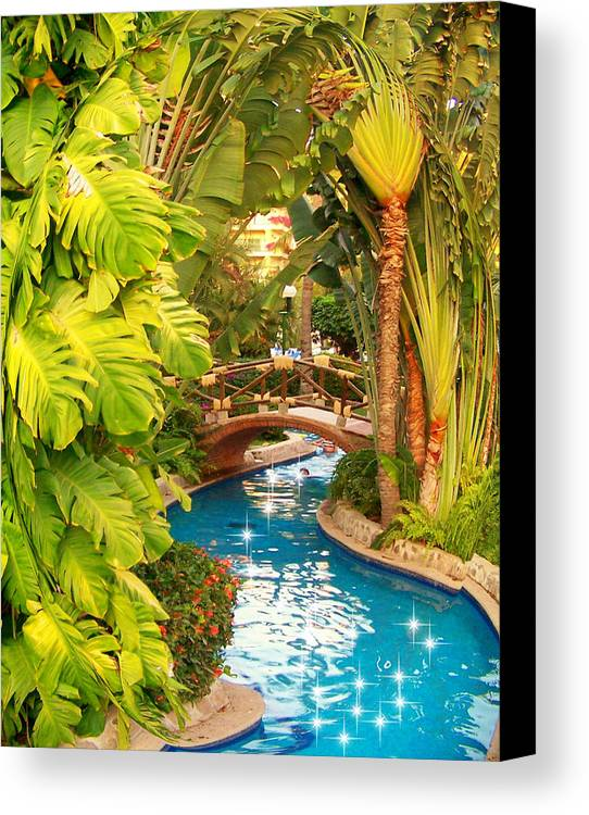 Nature Canvas Print featuring the photograph Follow Me by George Pasini