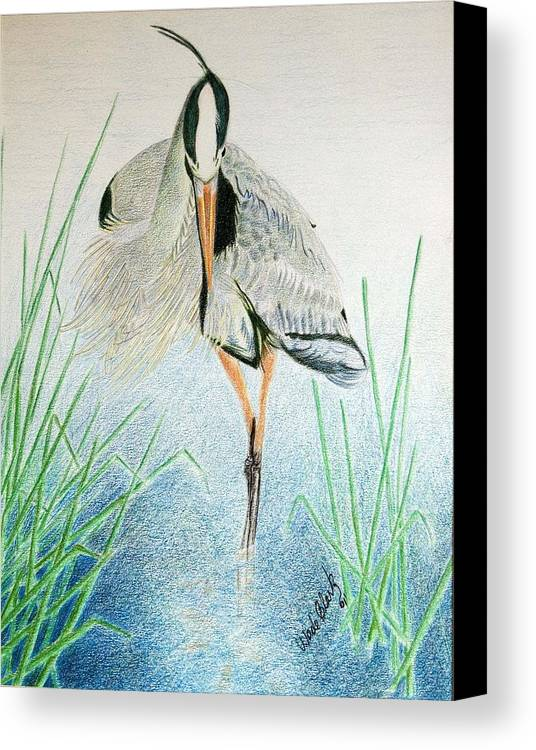 Animals Canvas Print featuring the painting Great Blue Heron by Wade Clark
