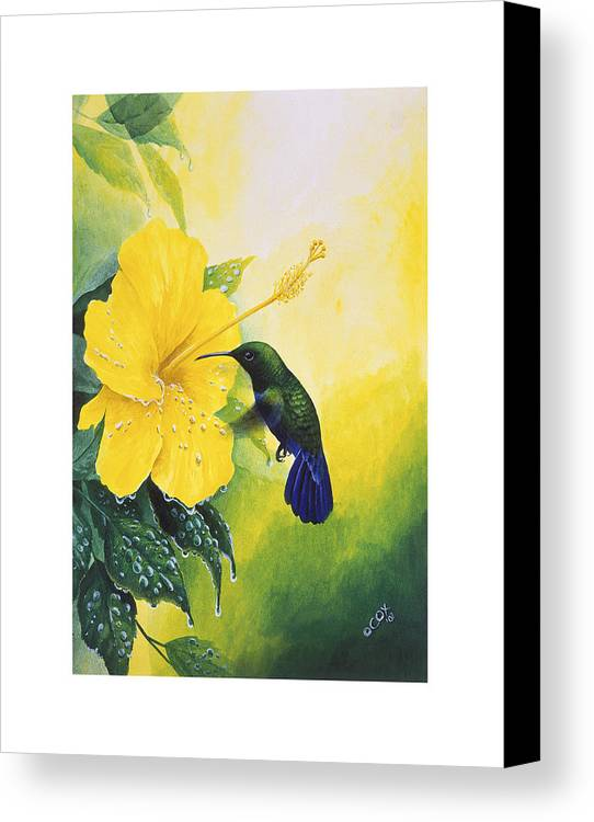 Chris Cox Canvas Print featuring the painting Green-throated Carib Hummingbird And Yellow Hibiscus by Christopher Cox