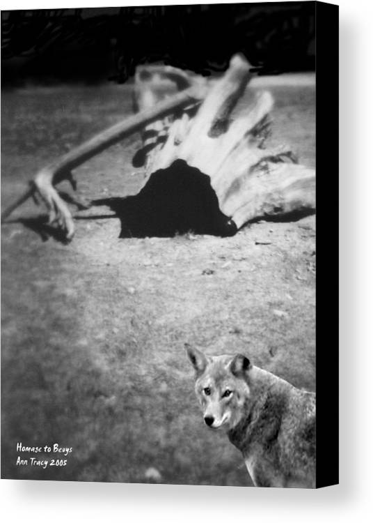 Yosemite Canvas Print featuring the photograph Homage To Josef Beuys by Ann Tracy