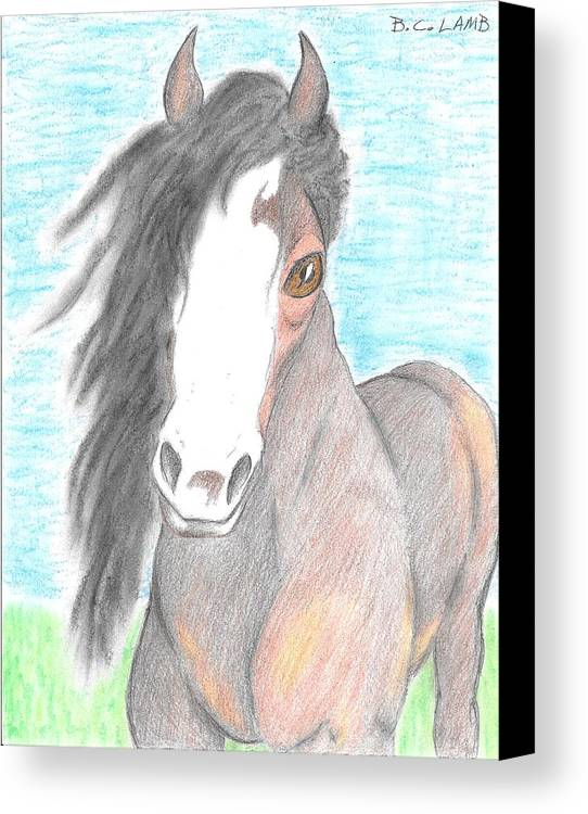 Horse Canvas Print featuring the drawing Horsin' Around by Bryant Lamb