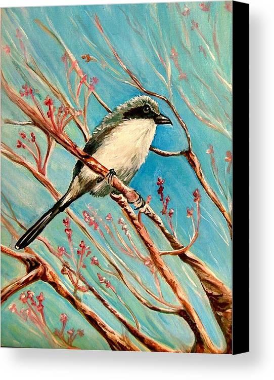Loggerhead Shrike Canvas Print featuring the painting Loggerhead Shrike by Carol Allen Anfinsen