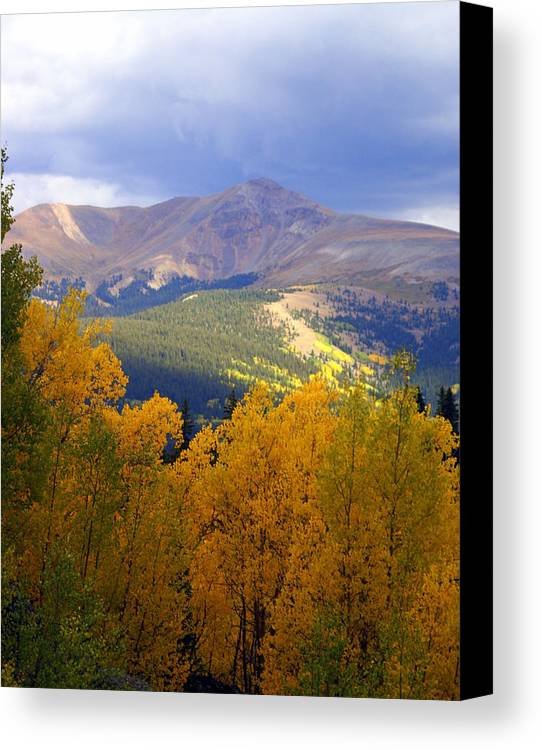Colorado Canvas Print featuring the photograph Mountain Fall by Marty Koch