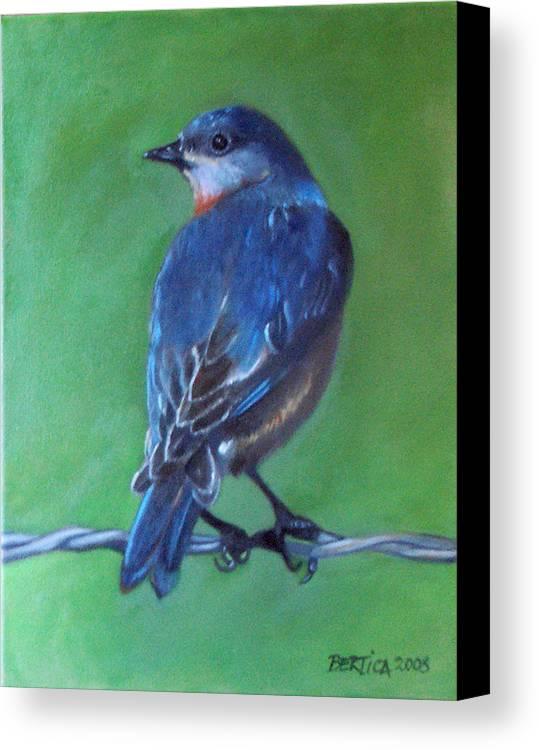 Bird Canvas Print featuring the painting Pajarito Azul De Espaldas by Bertica Garcia-Dubus