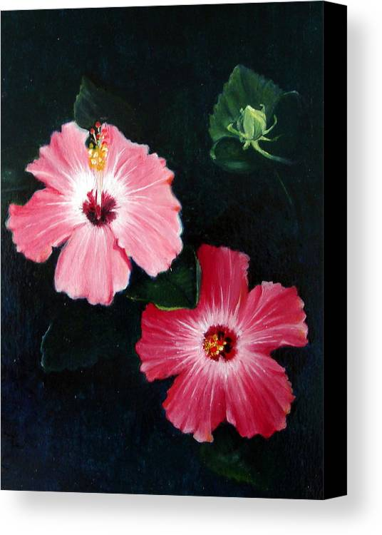 Oil Canvas Print featuring the painting Pink Hibiscus by Bonnie Haversat