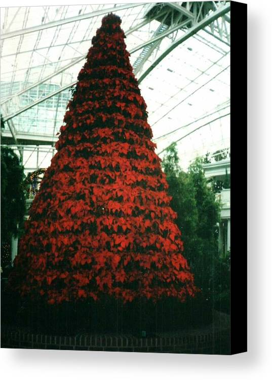 Christmas Canvas Print featuring the digital art Pointsettia Tree by Peter Canonico