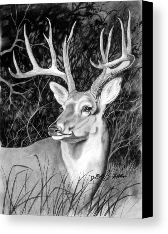 Deer Canvas Print featuring the drawing The Buck by Howard Dubois