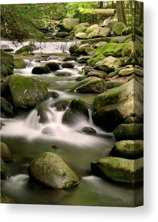 Smoky Mountain Canvas Print featuring the photograph Smoky Mountain Stream by Cindy Haggerty