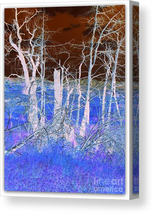 Landscape Canvas Print featuring the photograph Frosty Forest by Mickey Harkins