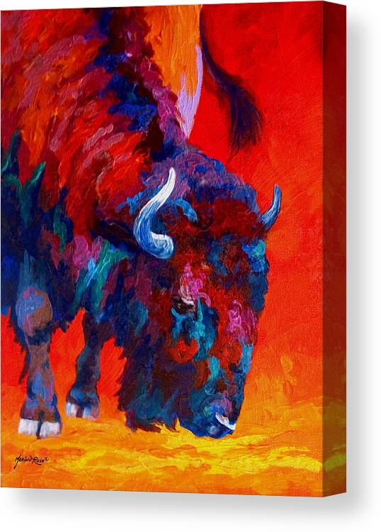 Bison Canvas Print featuring the painting Grazing Bison by Marion Rose