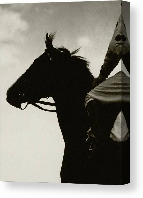 Animal Canvas Print featuring the photograph Race Horse Gallant Fox by Edward Steichen