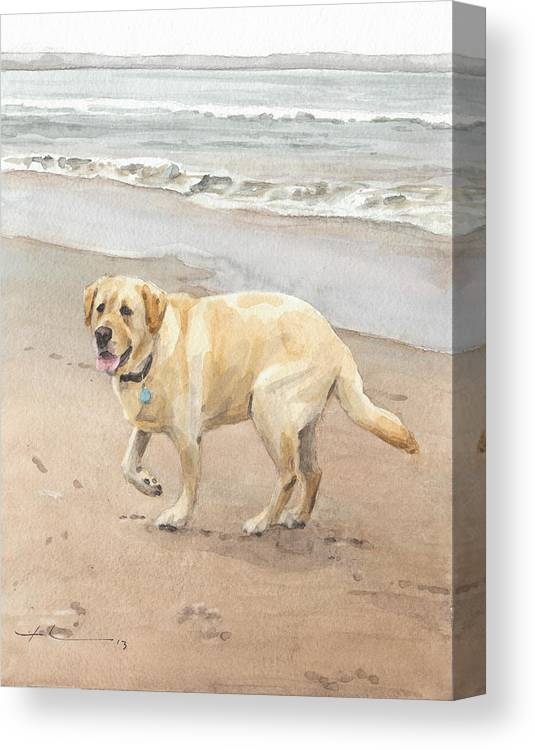 Www.miketheuer.com Yellow Lab On Beach Watercolor Portrait Canvas Print featuring the drawing Yellow Lab On Beach Watercolor Portrait by Mike Theuer