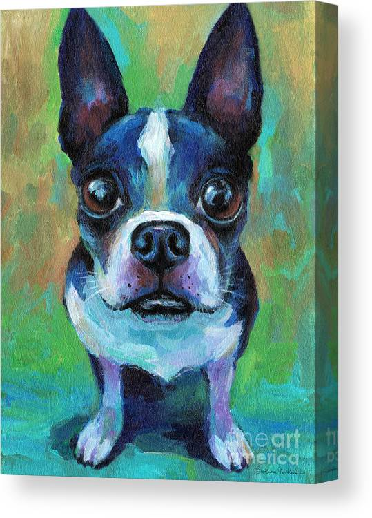 Boston Terrier Canvas Print featuring the painting Adorable Boston Terrier Dog by Svetlana Novikova
