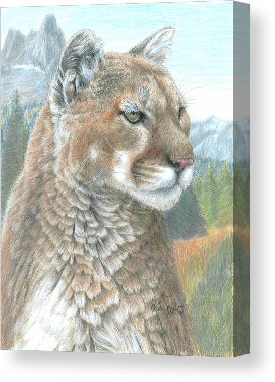 Cougar Canvas Print featuring the drawing Cougar 2 by Carla Kurt