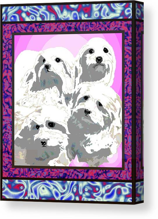 Maltese Group Canvas Print featuring the digital art Maltese Group by Kathleen Sepulveda