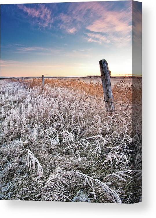 Tranquility Canvas Print featuring the photograph Field by Ingólfur Bjargmundsson