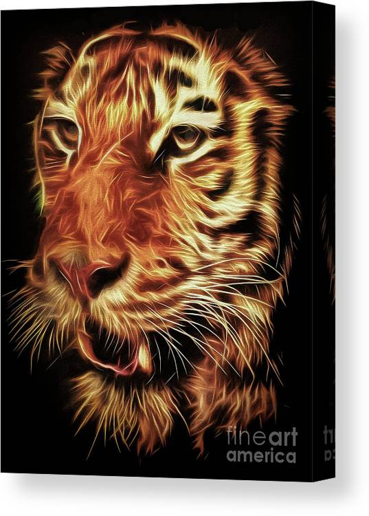 Tiger Canvas Print featuring the photograph T T T Tiger by Leigh Kemp