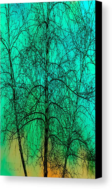 Abstract Canvas Print featuring the photograph Change Of Seasons by Bob Orsillo