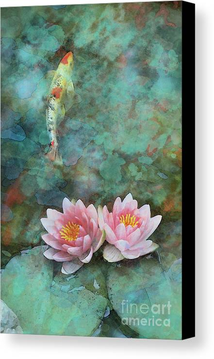 Koi morning mist canvas print canvas art by gina signore for Koi prints canvas