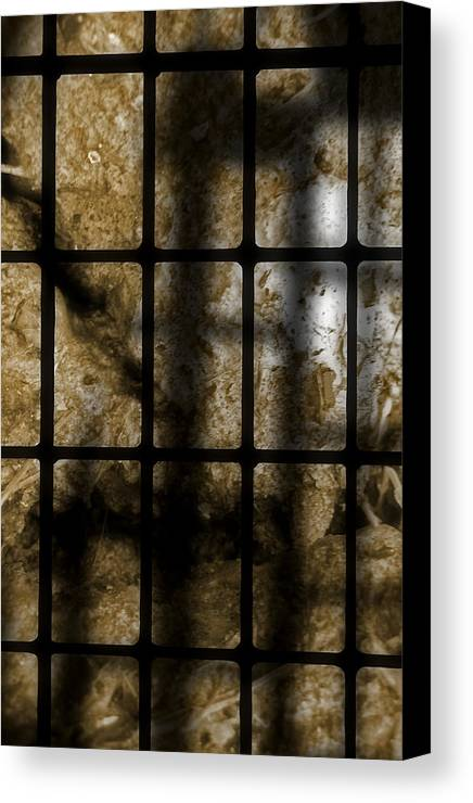 Abstract Canvas Print featuring the photograph Death As Shadow by Steve Parrott