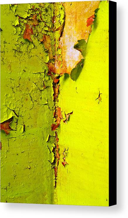 Skip Hunt Canvas Print featuring the photograph Going Green by Skip Hunt