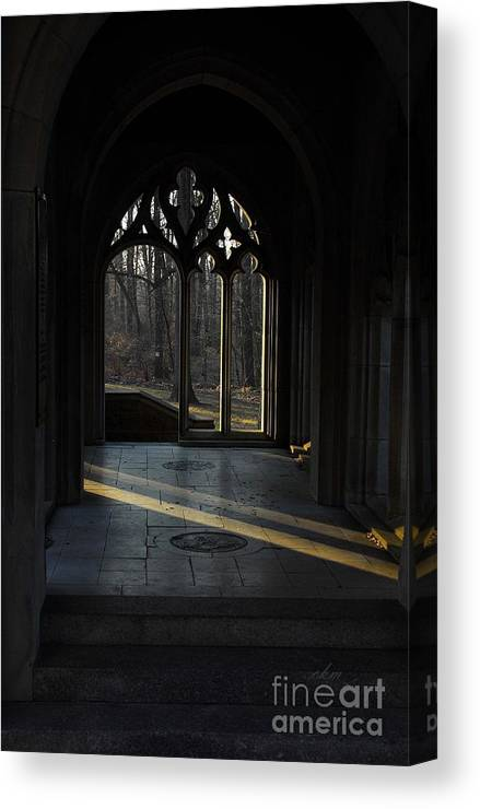 Beam Of Light Canvas Print featuring the photograph A Beam Of Light by Cindy Manero
