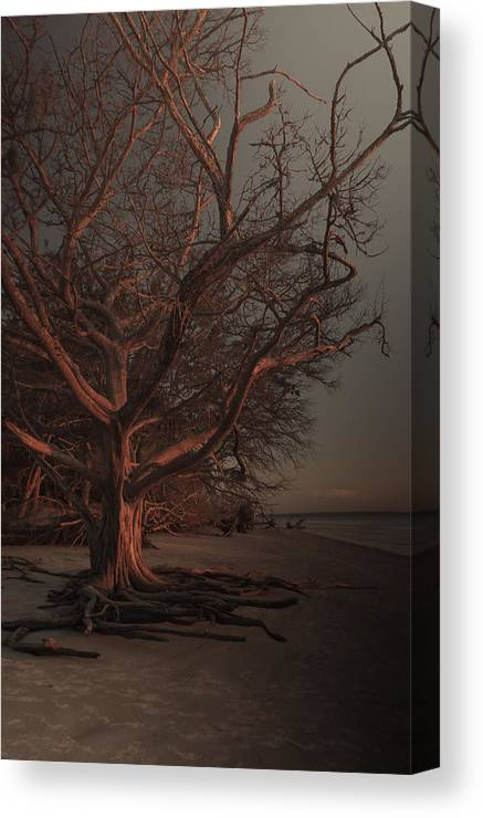Bridges Canvas Print featuring the photograph Jekyll Island Sunset by Michael Carriero