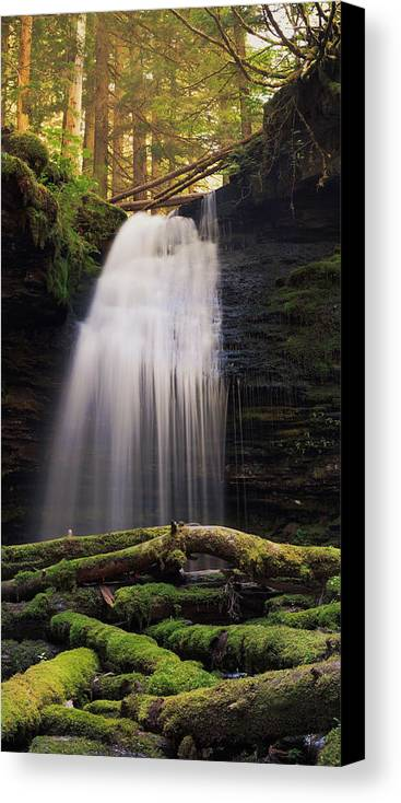 Idaho Canvas Print featuring the photograph Fern Falls, Id by Inanimacy Photography