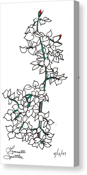 Canvas Print featuring the drawing Young Rose Bush by Lynnette Jones