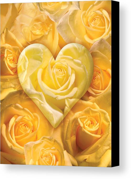 Alixandra Mullins Canvas Print featuring the photograph Golden Heart Of Roses by Alixandra Mullins