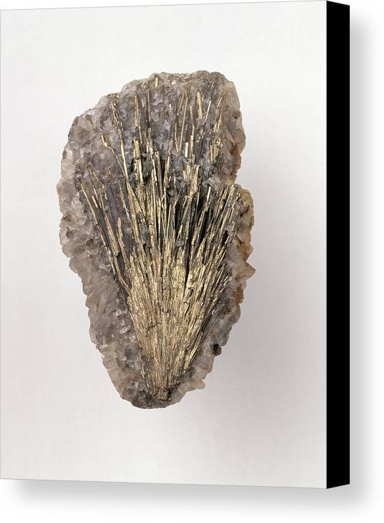 Brown Canvas Print featuring the photograph Millerite In Calcite Groundmass by Dorling Kindersley/uig