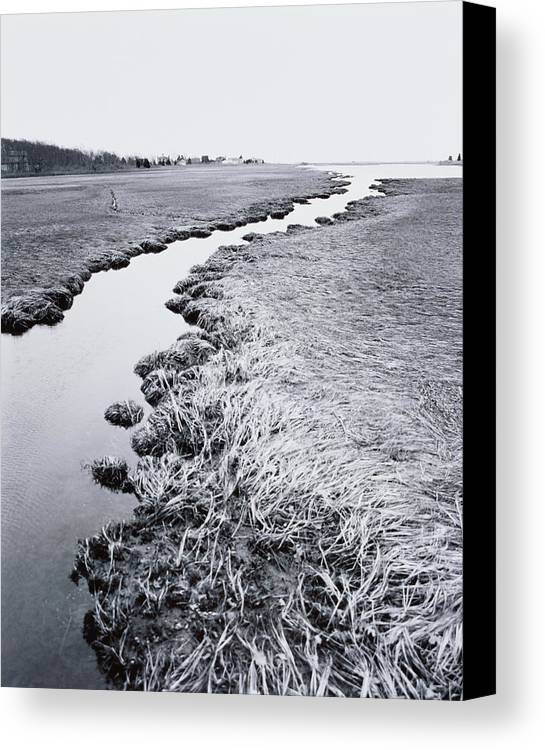 Vertical Canvas Print featuring the photograph River Near Forest by Allan Montaine