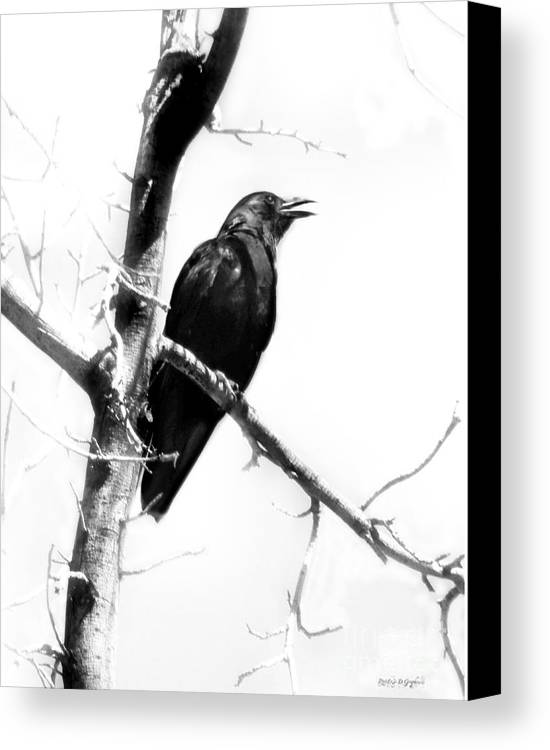 Canvas Print featuring the digital art Mother Crow by Rhonda Strickland