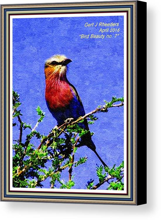 Birds Canvas Print featuring the painting Bird Beauty - No. 7 P A With Decorative Ornate Printed Frame. by Gert J Rheeders