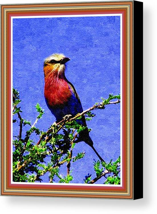 Birds Canvas Print featuring the painting Bird Beauty - No 7 P B With Alternative Decorative Ornate Printed Frame. by Gert J Rheeders