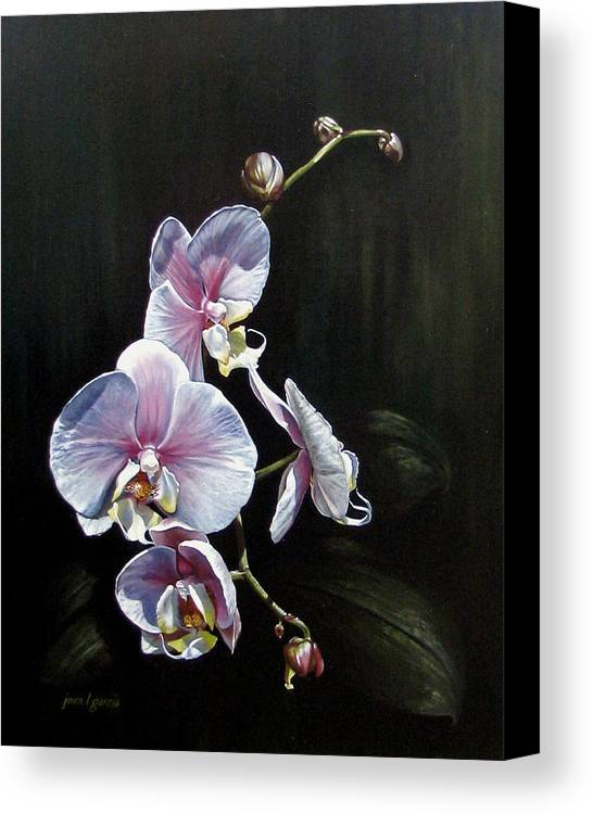 Orchid Canvas Print featuring the painting Blushing by Joan Garcia