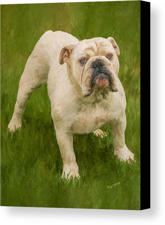 Dog Canvas Print featuring the painting Bruce The Bulldog by David Wagner