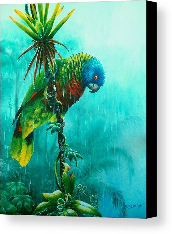 Chris Cox Canvas Print featuring the painting Drenched - St. Lucia Parrot by Christopher Cox